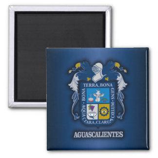 Aguascalientes Square Magnet