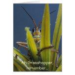 Ah Grasshopper ~ Funny Happy Birthday Card