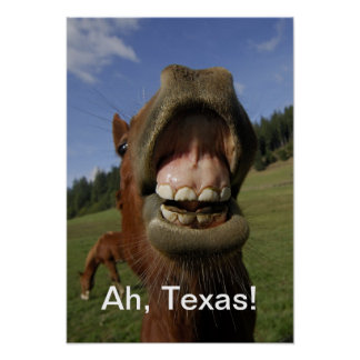 Ah Texas!  Horse flapping gums Posters