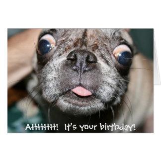 AHHHH!  It's your birthday! Birthday Card