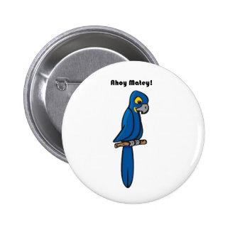 Ahoy Matey Blue Macaw Parrot Cartoon Pinback Buttons