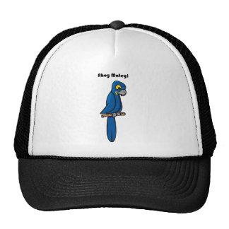 Ahoy Matey Blue Macaw Parrot Cartoon Trucker Hat