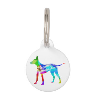 AHT Rainbow Prism Pet Tag