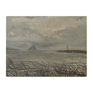Ailsa Craig from Arran 2007 Wood Wall Art