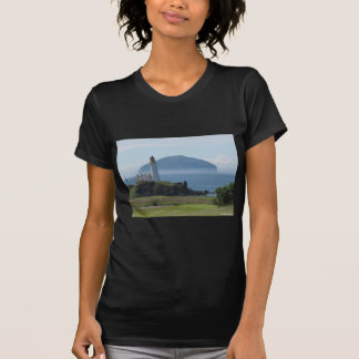Ailsa Craig Gifts T Shirts Art Posters Other Gift Ideas Zazzle
