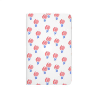 Air Ballons Pocket Journal