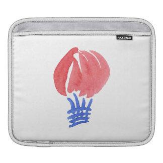 Air Balloon iPad Sleeve