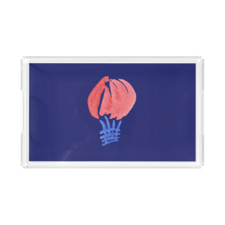 Air Balloon Small Rectangle Tray