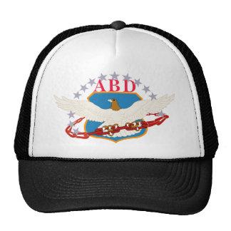 Air Base Defense Cap