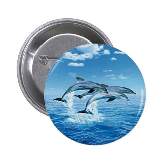 Air Dolphins Button