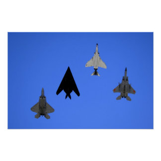 Air Force 49th Fighter Wing Formation Print