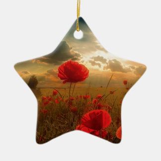 Air Force Tribute Christmas Ornament