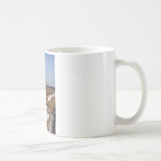 Air Mail Basic White Mug