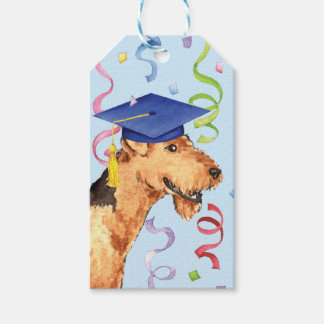 Airedale Graduate