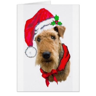 Airedale In Santa Hat Greeting Cards