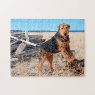 Airedale on a stack of wood jigsaw puzzle