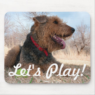 Airedale playing ball in dried grasses mouse mat