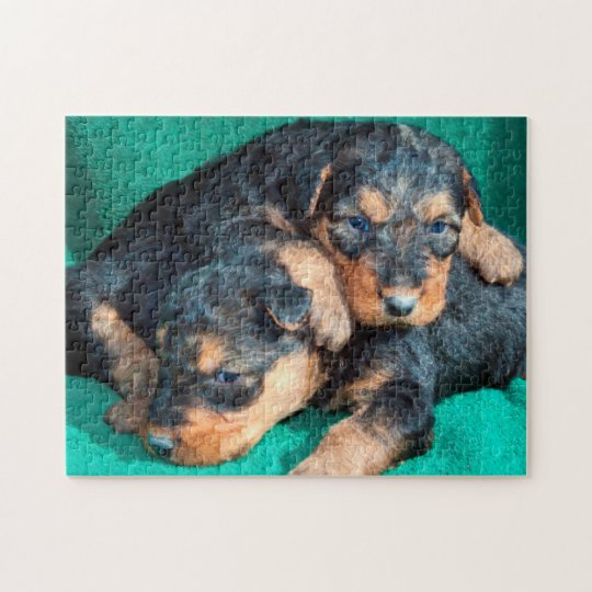 Airedale puppies lying on towel jigsaw puzzle