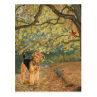 Airedale Terrier Birdwatching Postcard