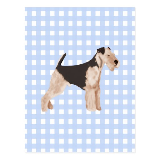 Airedale Terrier Blue Gingham Postcard