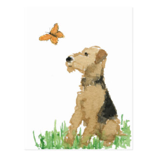 Airedale Terrier & Butterfly Postcard