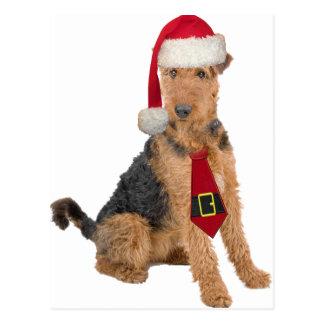 Airedale Terrier In Santa Hat Postcard