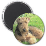 Airedale Terrier Round Magnet Refrigerator Magnet