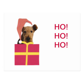 Airedale Terrier Santa Hat Gift Box Postcard
