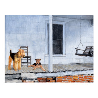 Airedale Terriers on the Veranda Postcard