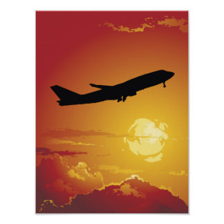 Airplane in Flight Poster
