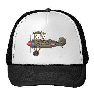 Airplane Vintage Biplane Hats Hat