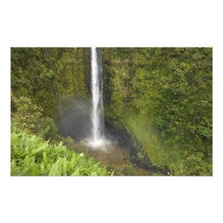Akaka Falls, Hamakua Coast, Island of Hawaii, Photo