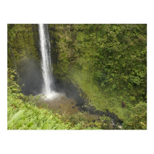 Akaka Falls, Hamakua Coast, Island of Hawaii, Postcard
