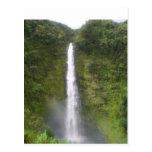 Akaka Falls Hilo, Hawaii Postcard
