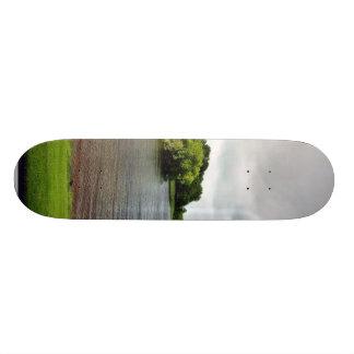 Akes Lough Gur Clouds Trees Ireland Skate Board