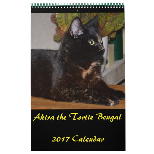 Akira the Tortie Bengal 2017 Medium Calendar