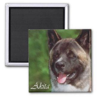 Akita Gifts of Art Magnet