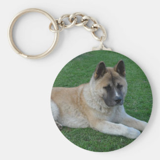 akita laying basic round button key ring