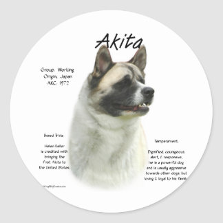 Akita (pinto) History Design Classic Round Sticker