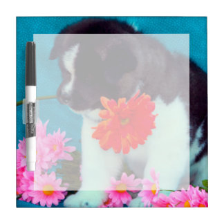 Akita puppy with flowers dry erase board