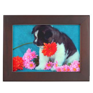 Akita puppy with flowers keepsake box