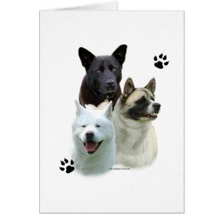 Akita Trio Card