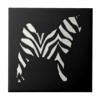 Akita Zebra Tile