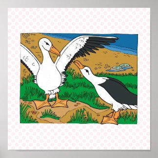 Al & Ally Albatross Poster
