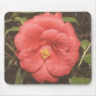 Alabama Camellia (Red) Mouse Pad