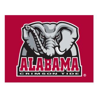 Alabama Crimson Tide Big Al Postcard