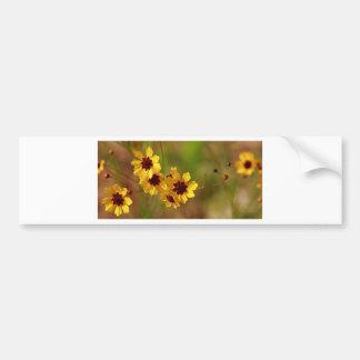 Alabama Golden Coreopsis tinctoria Wildflowers Bumper Stickers