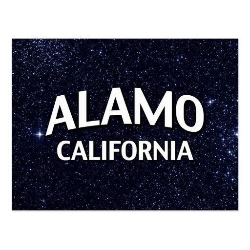 Alamo California Post Card