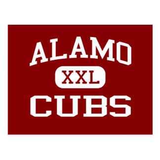 Alamo - Cubs - Alamo Middle School - Alamo Texas Postcard