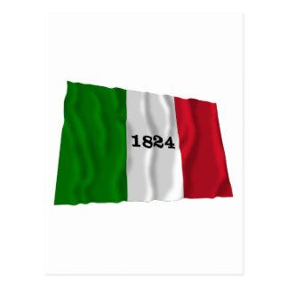 Alamo Flag Postcard